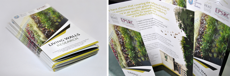 Brochures design and print